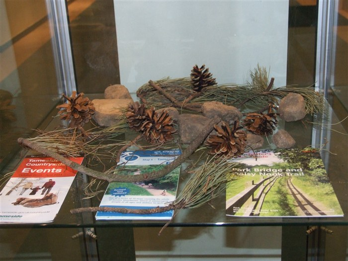 Display collected by students