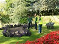 Horticulture students gain work experience with Tameside's Greenspace